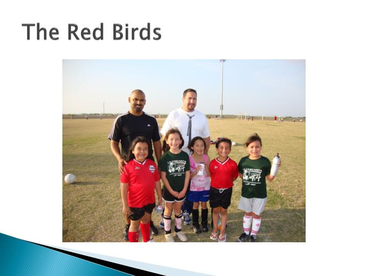 The red birds