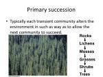 primary succession1