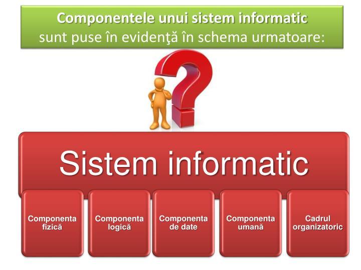 Componentele unui sistem informatic