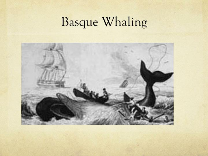 Basque Whaling