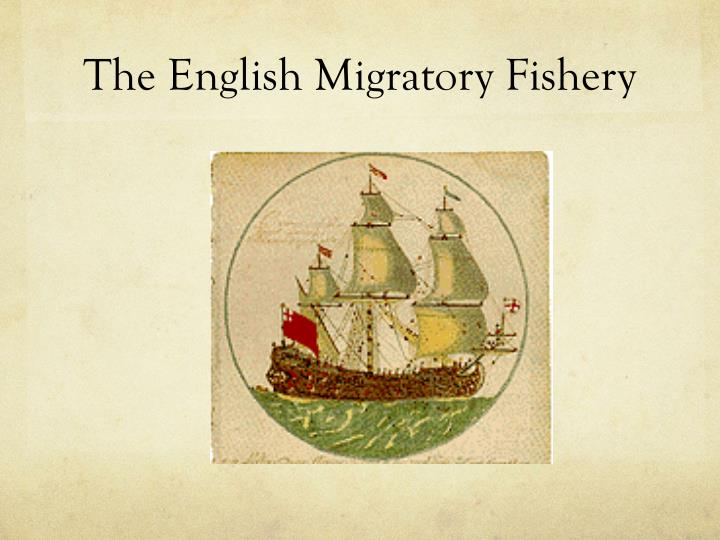 The English Migratory Fishery