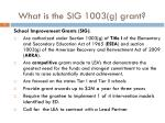 what is the sig 1003 g grant