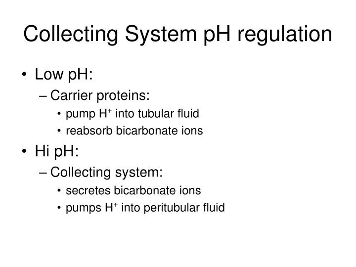 Collecting System pH regulation