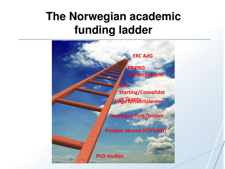 The Norwegian academic