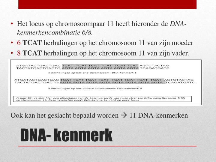 Het locus op chromosoompaar 11 heeft hieronder de