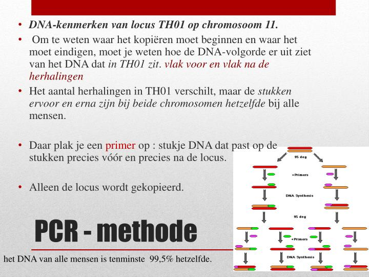DNA-kenmerken