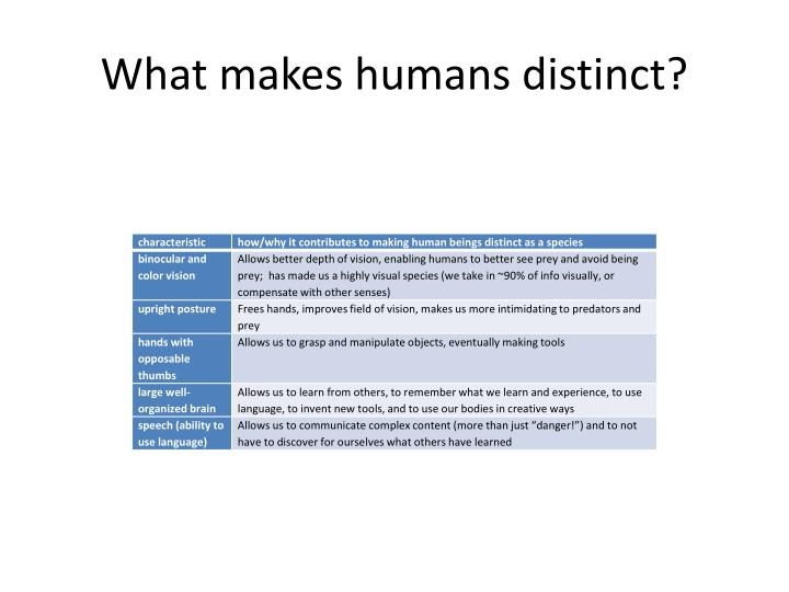 What makes humans distinct?