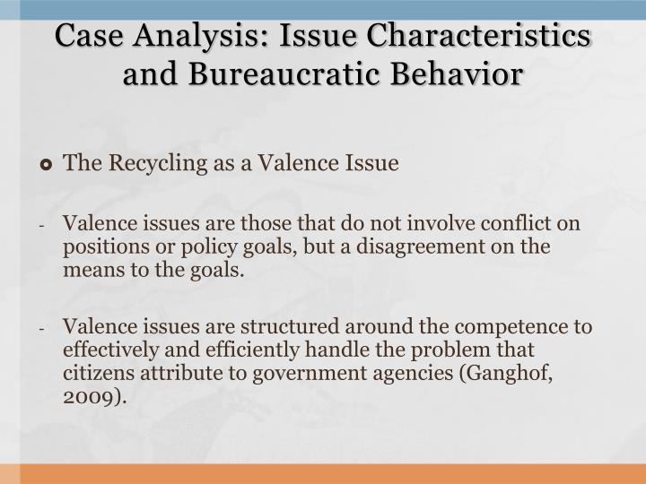 Case Analysis: Issue Characteristics and Bureaucratic Behavior