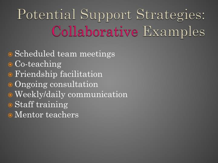 Potential Support Strategies: