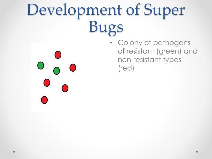 Development of Super Bugs
