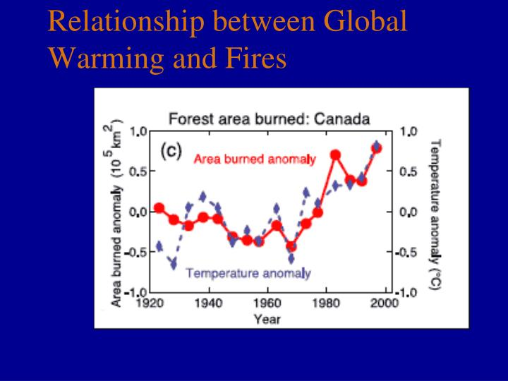 Relationship between Global Warming and Fires