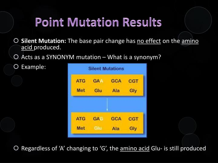 Point Mutation Results