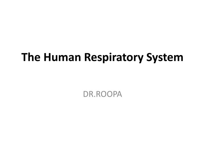 the human respiratory system n.