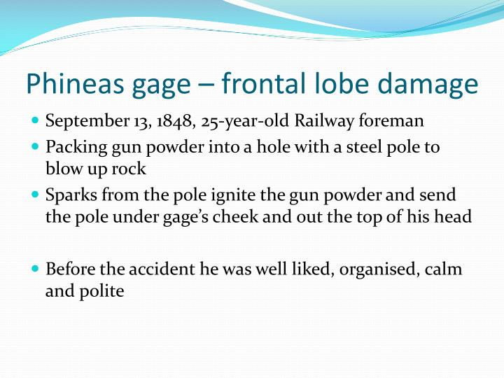 phineas gage essay