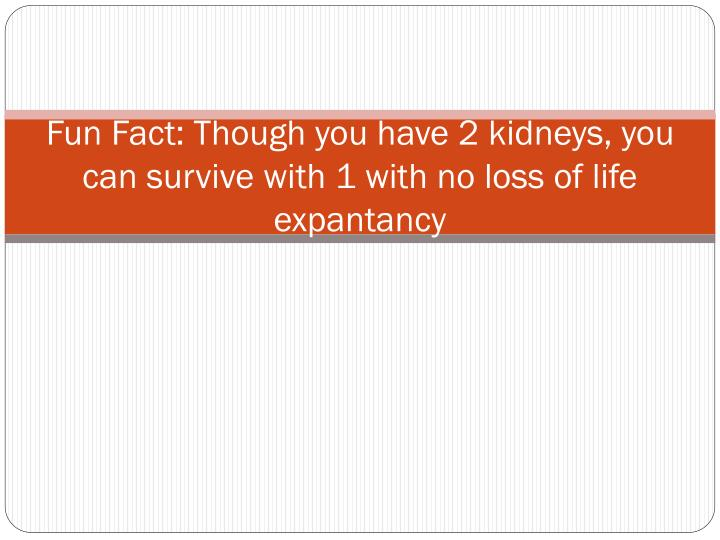 Fun fact though you have 2 kidneys you can survive with 1 with no loss of life expantancy