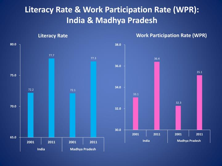 Literacy Rate & Work Participation Rate (WPR):