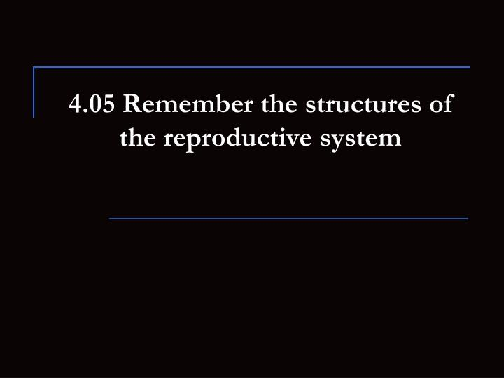 4 05 remember the structures of the reproductive system n.