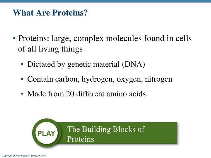 what are proteins n.