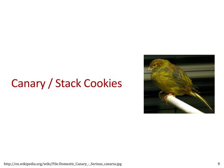Canary / Stack Cookies