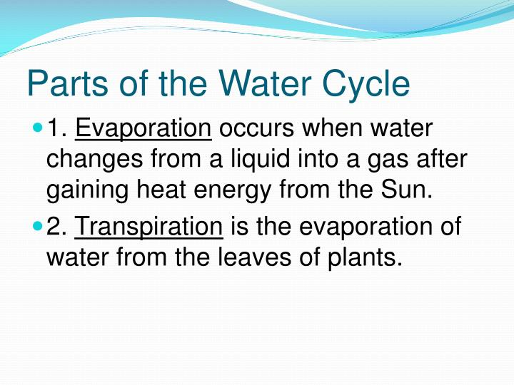 Parts of the Water Cycle