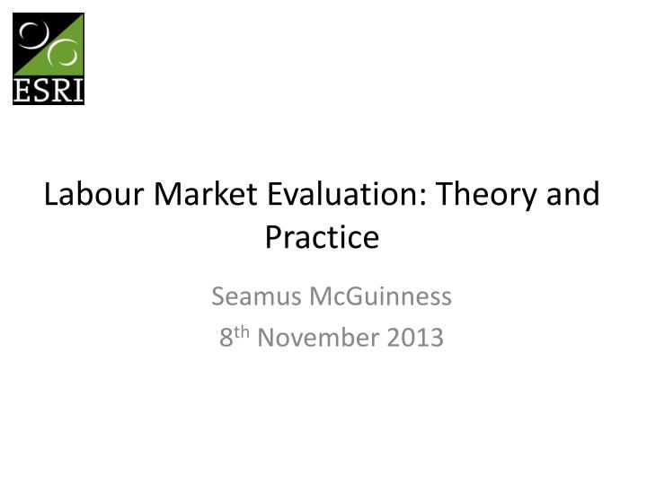 labour market evaluation theory and practice n.