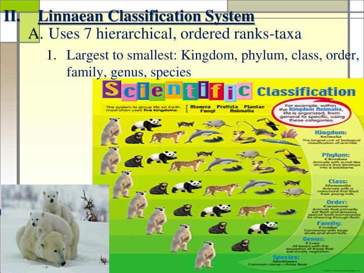 Linnaean Classification System
