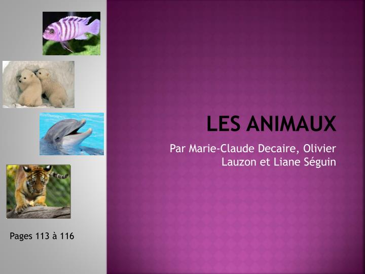 les animaux n.