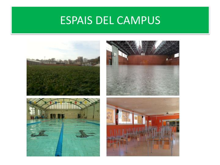 ESPAIS DEL CAMPUS
