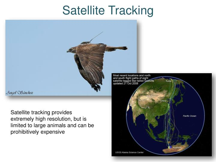 Satellite Tracking