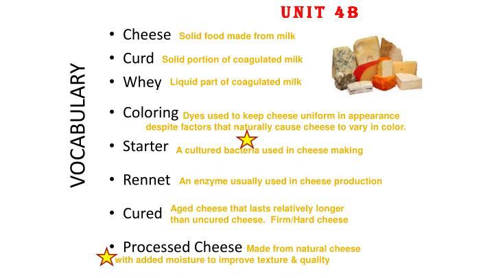 UNIT 4B