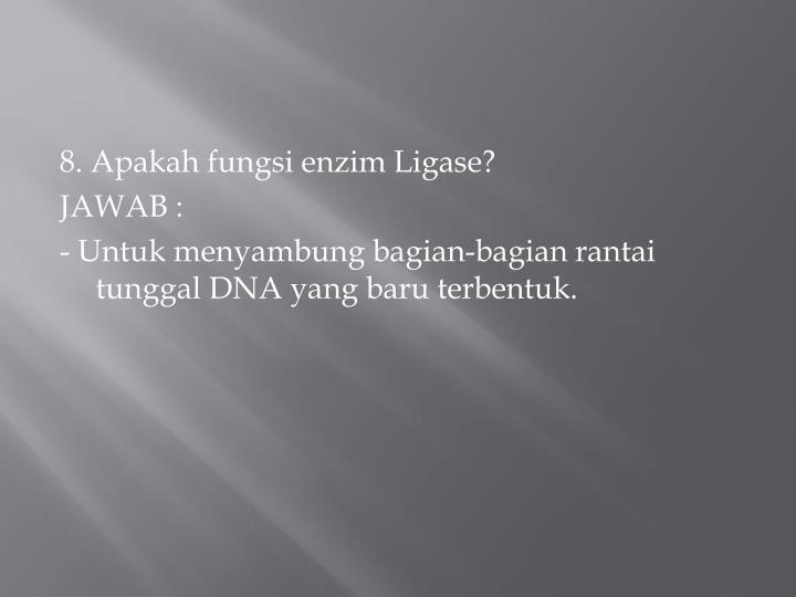 8. Apakah fungsi enzim Ligase?