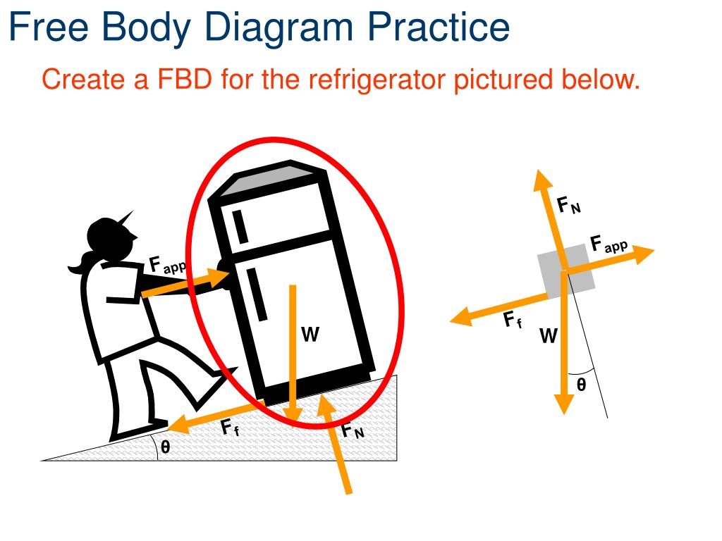 Ppt - Free Body Diagrams Powerpoint Presentation  Free Download