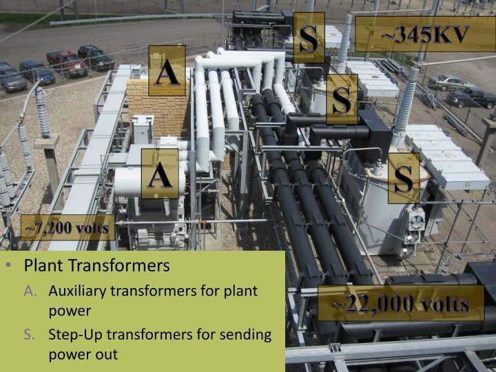 Plant Transformers