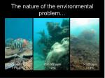 the nature of the environmental problem
