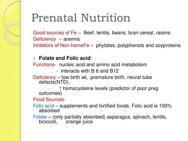 Prenatal Nutrition