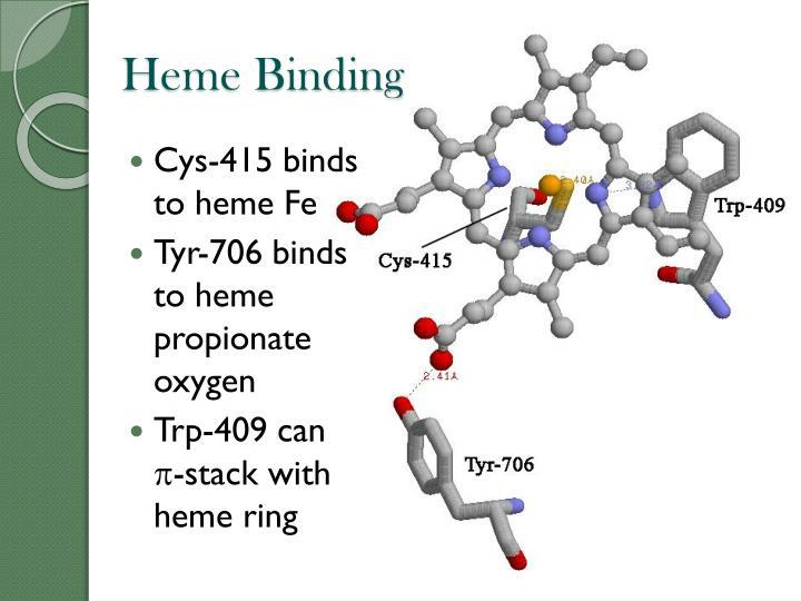 Heme Binding