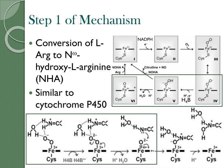 Step 1 of Mechanism