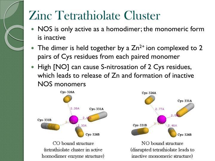 Zinc Tetrathiolate Cluster