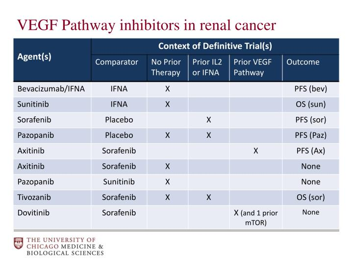 VEGF Pathway inhibitors in renal cancer