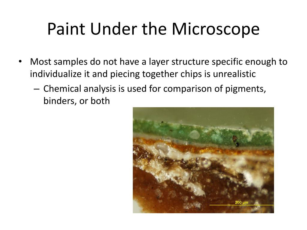 PPT - Chapter 11: Forensic Examination of Paint PowerPoint