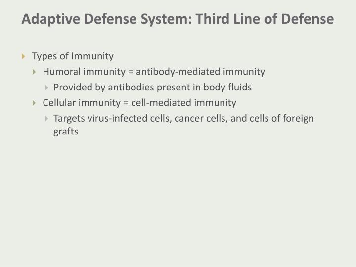Adaptive Defense System: Third Line of Defense