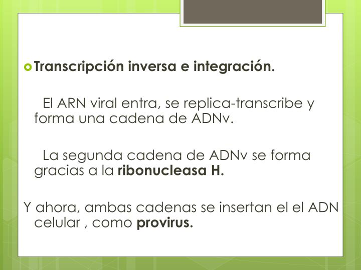 Transcripción inversa e integración