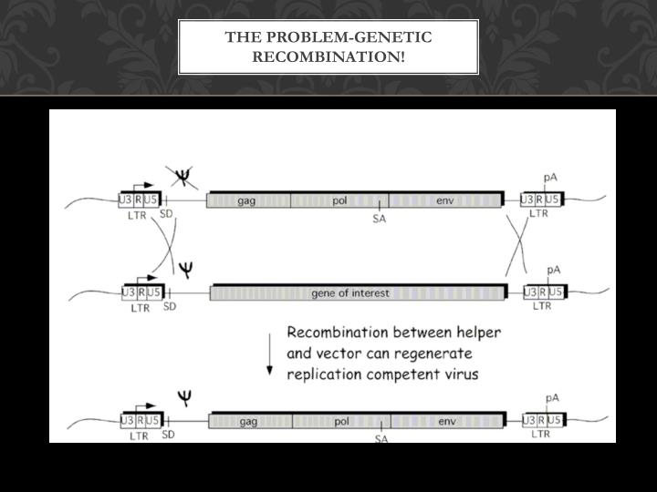 THE PROBLEM-GENETIC RECOMBINATION!