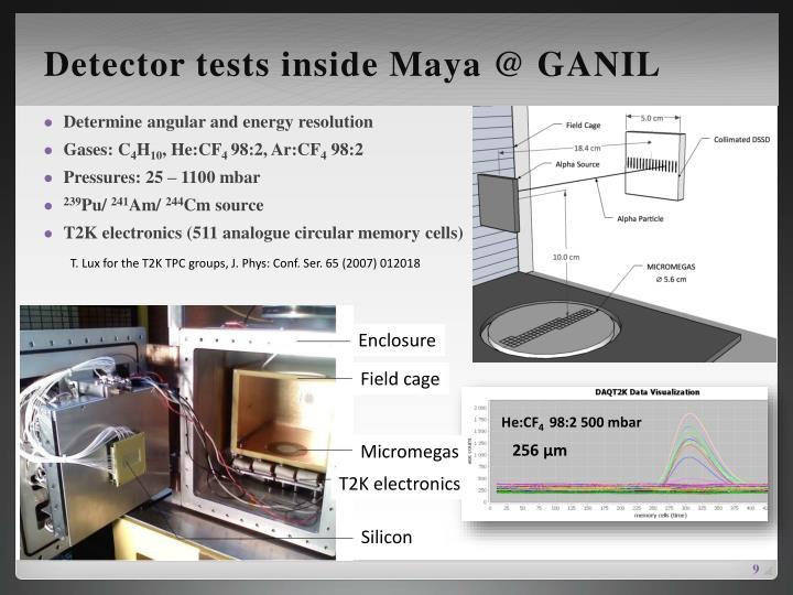 Detector tests inside Maya @ GANIL
