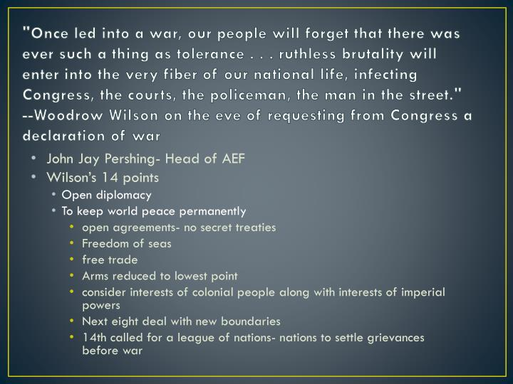 """""""Once led into a war, our people will forget that there was ever such a thing as tolerance . . . ruthless brutality will enter into the very fiber of our national life, infecting Congress, the courts, the policeman, the man in the street."""""""