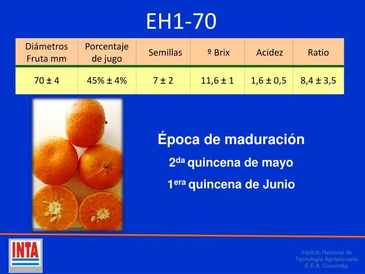 EH1-70