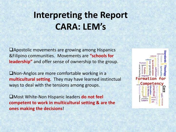 Interpreting the Report