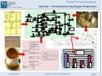 hytime fermentative hydrogen production4
