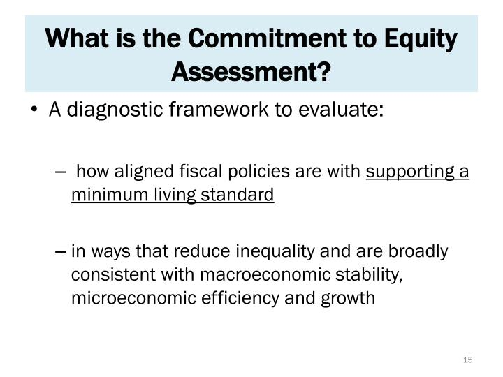 What is the Commitment to Equity Assessment?