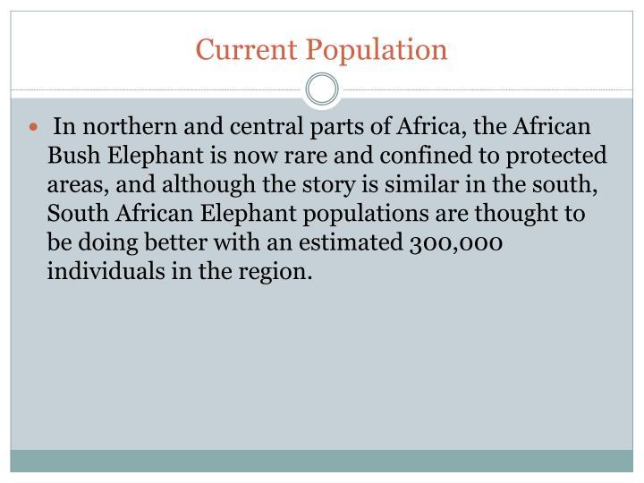 Current Population